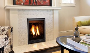ENVIRO Q1 - GAS FIREPLACE